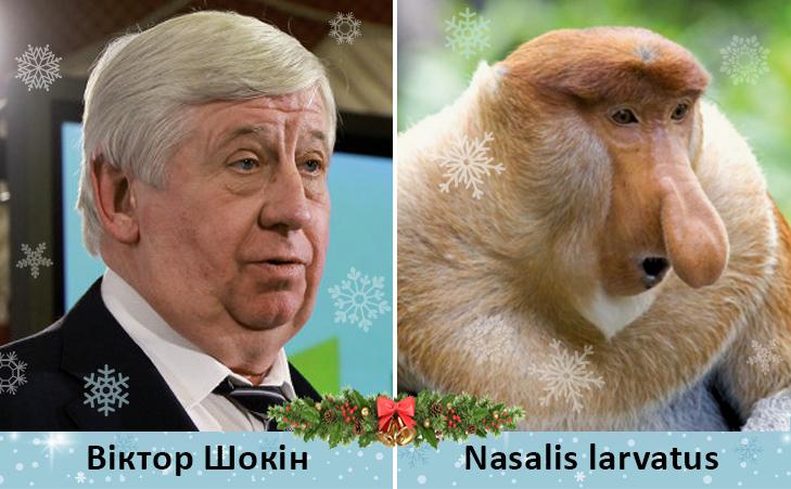 Політики та мавпи - фото 4