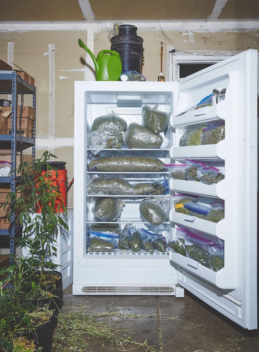 Як американські монахині вирощують марихуану - фото 3