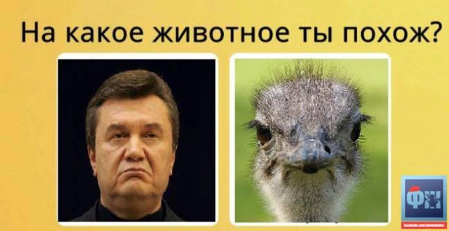 Янукович (ФОТОЖАБИ) - фото 10