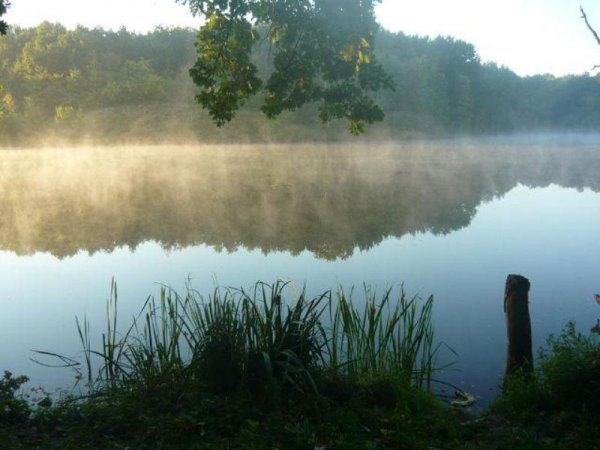 Подорожі Україною: ТОП-10 вражаючих озер - фото 14