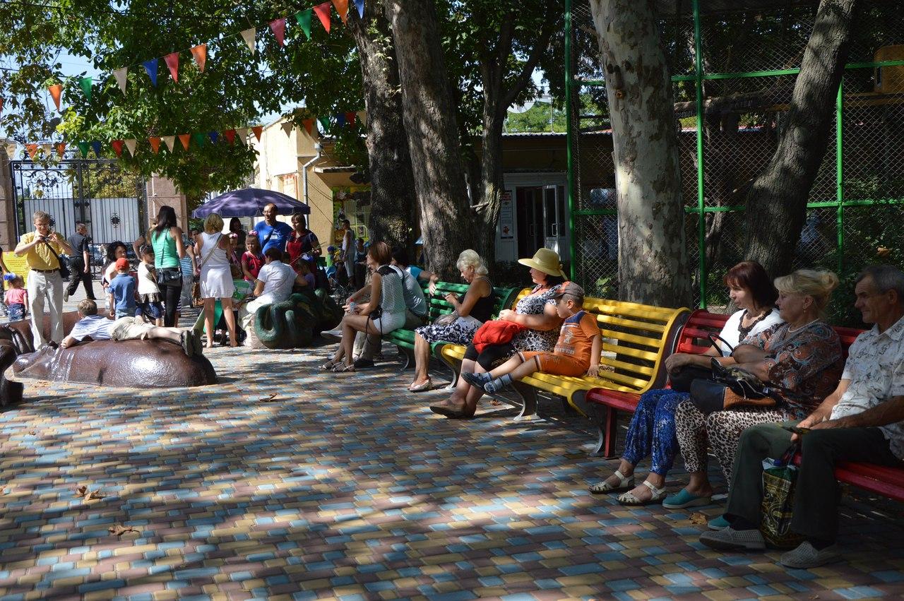 Як звірі у Миколаївському зоопарку поздоровляли городян з Днем міста - фото 1