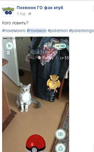 ТОП-10 кумедних і моторошних історій про ловців покемонів - фото 2