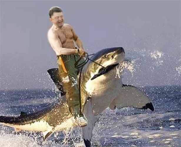Порошенко-Путін. Президенти різні - піарщикі однакові (ФОТОЖАБИ) - фото 10
