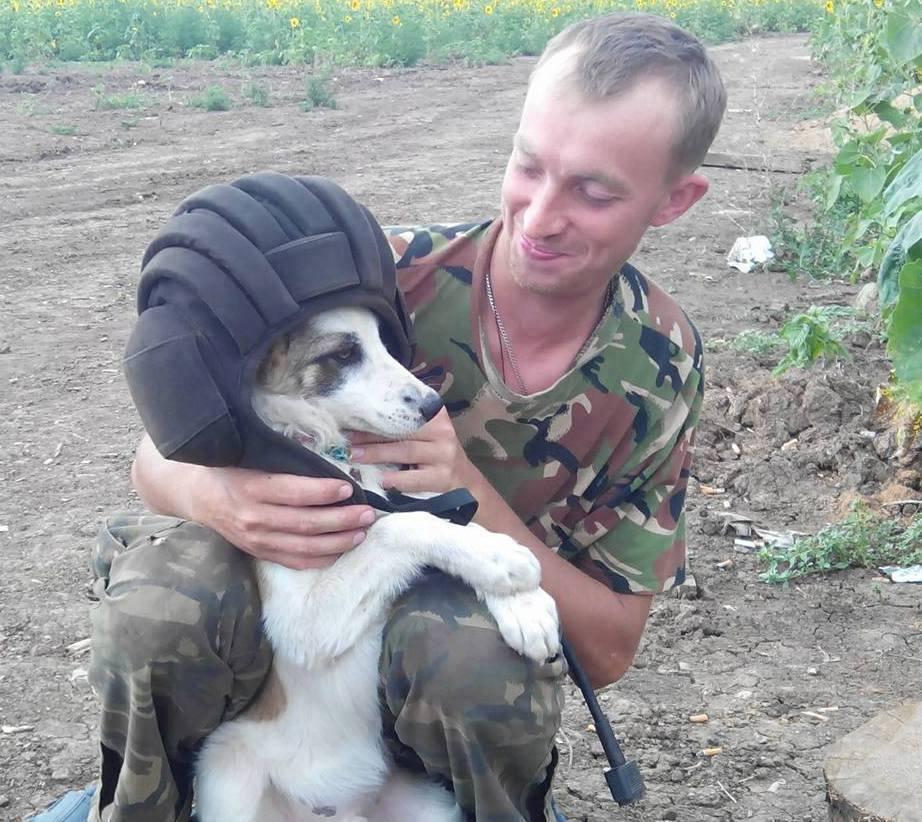 Чим займаються на Донбасі найкращі друзі бійців АТО - 2 - фото 3