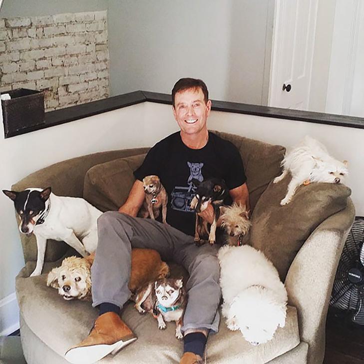 Щастя старих собак, яких взяли з вулиці - фото 17