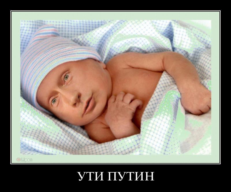 У соцмережах затролили єгиптянина, який назвав сина Путіним (ФОТОЖАБИ) - фото 3