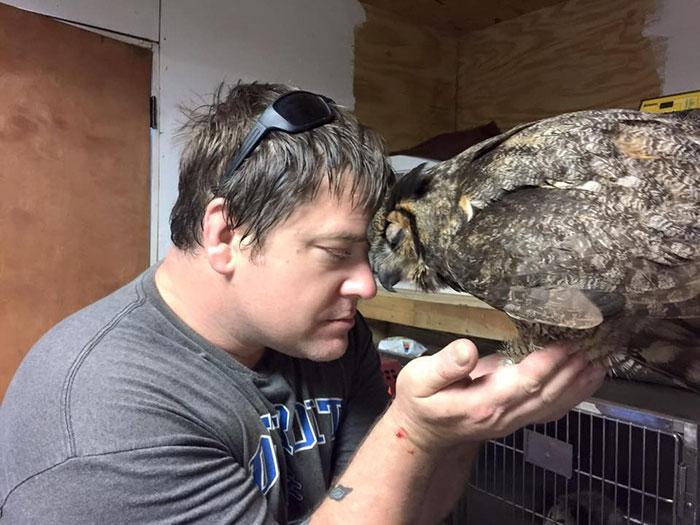 Як сова зворушливо обіймати свого рятівника - фото 3