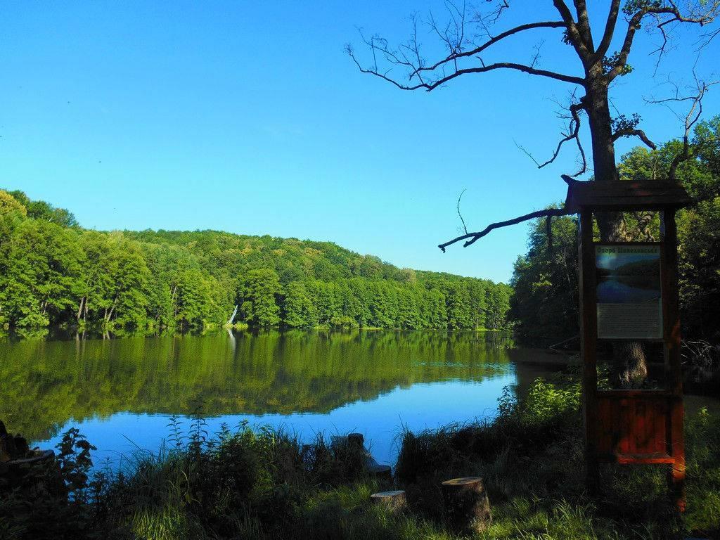 Подорожі Україною: ТОП-10 вражаючих озер - фото 12