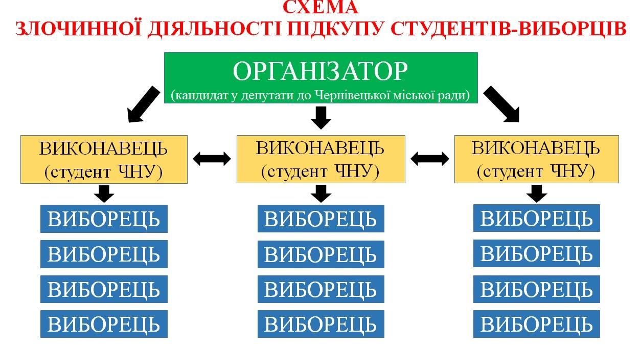 В Україні вперше оголосили вирок за підкуп виборців 25 жовтня (ІНФОГРАФІКА) - фото 4