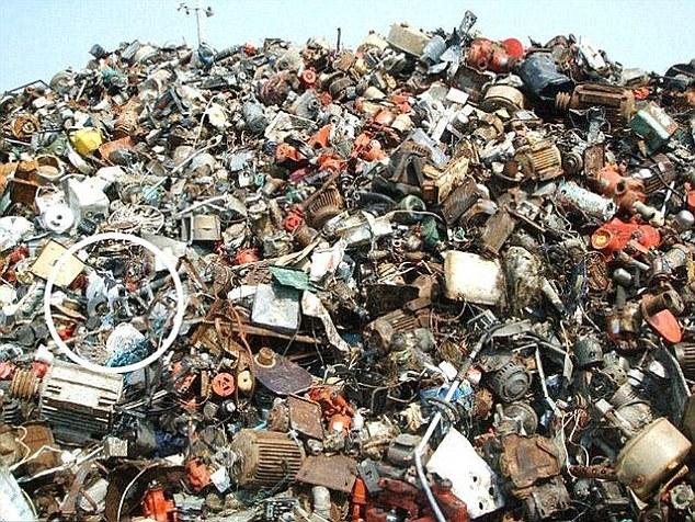 Нова британська забавка: Знайдіть кота серед сміття, а борсука - серед зебр - фото 2