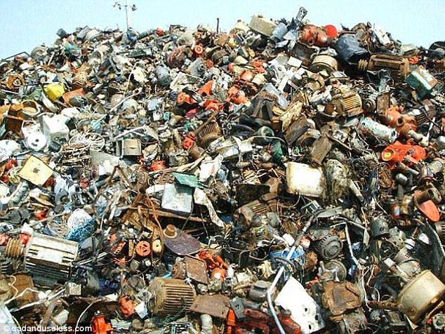 Нова британська забавка: Знайдіть кота серед сміття, а борсука - серед зебр - фото 1