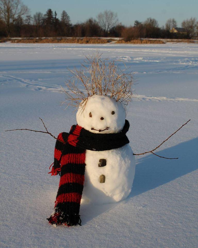 Красені і чудовиська: ТОП-10 оригінальних сніговиків - фото 1
