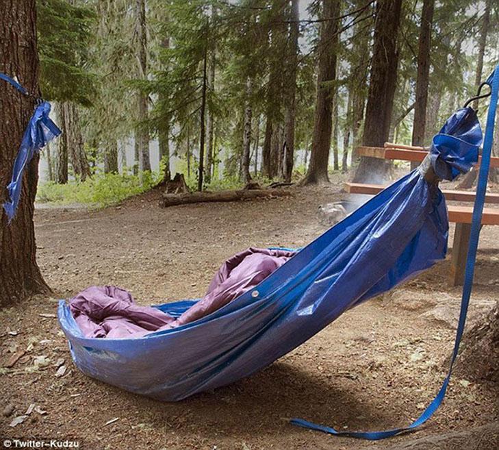 Епічні провали любителів відпочивати на природі - фото 4