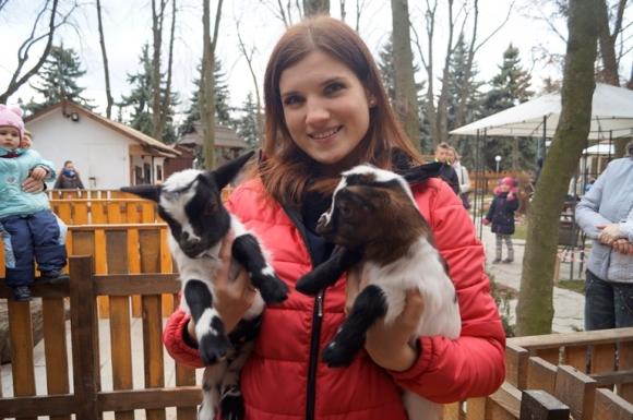 У вінницькому центральному парку народились карликові козенята - фото 1