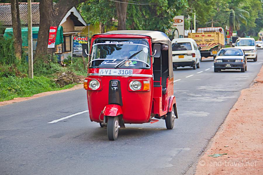 Подорож до їжачків і дороге бібікання: ТОП-10 цікавинок і приколів про таксі - фото 6