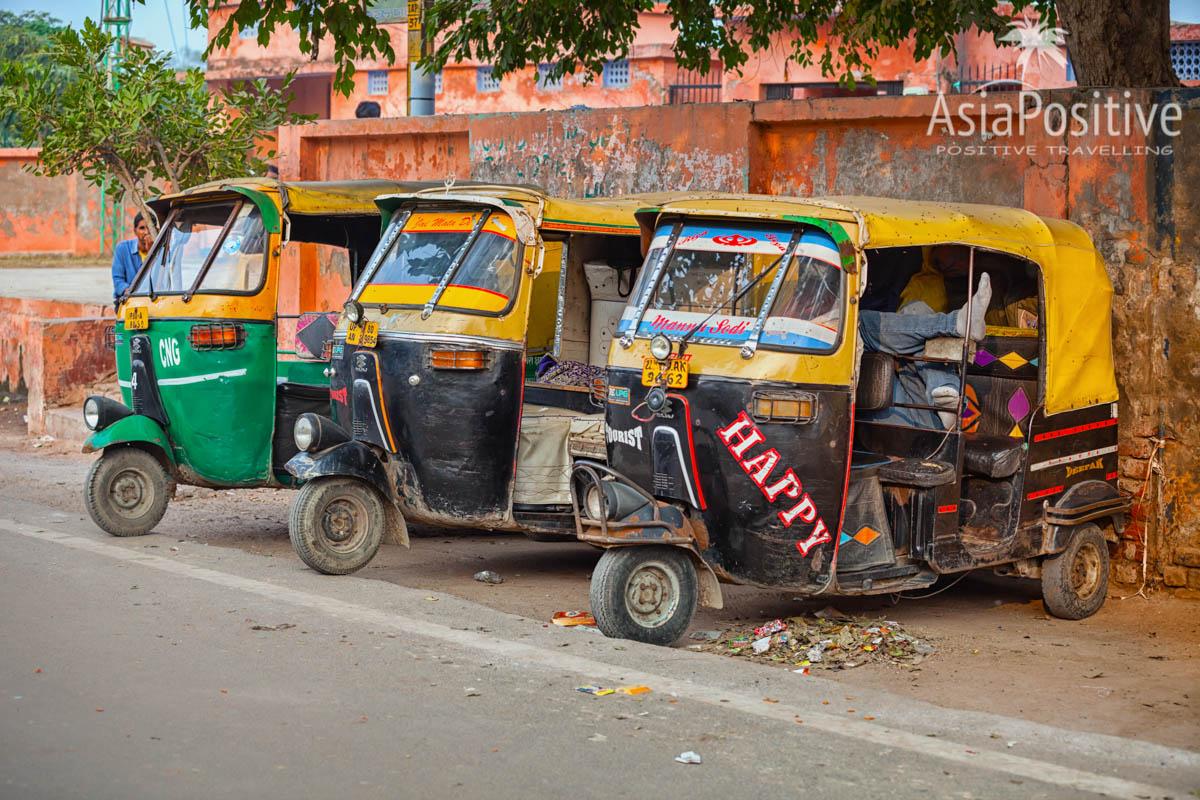 Подорож до їжачків і дороге бібікання: ТОП-10 цікавинок і приколів про таксі - фото 5