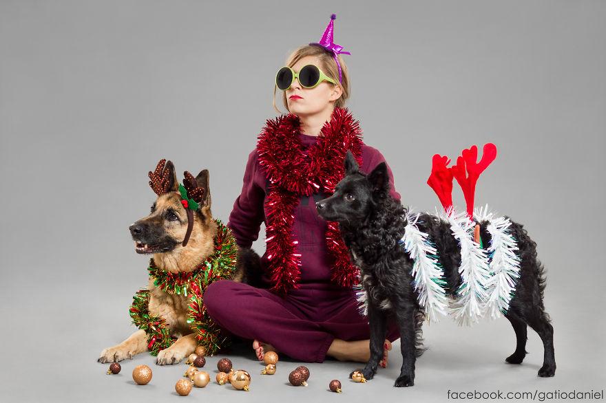 Як виглядають найноворічніші собаки у світі - фото 4