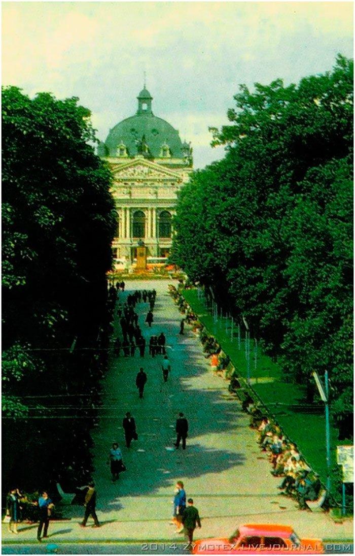 Колись у Львові трава була зеленішою - фото 9