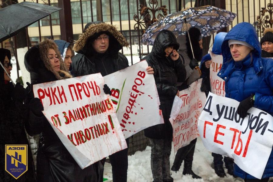 Як кіт з АТО, російські артисти та володарі браслетів рятують київських песиків - фото 9