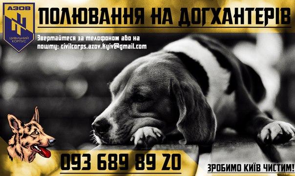 Як кіт з АТО, російські артисти та володарі браслетів рятують київських песиків - фото 10