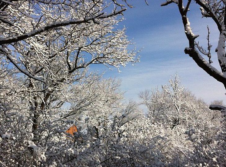 До Бердянська прийшла справжня зима  - фото 1