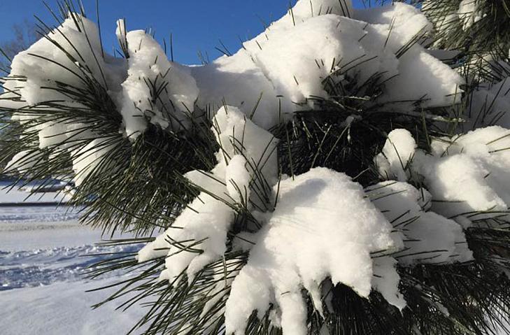 До Бердянська прийшла справжня зима  - фото 3