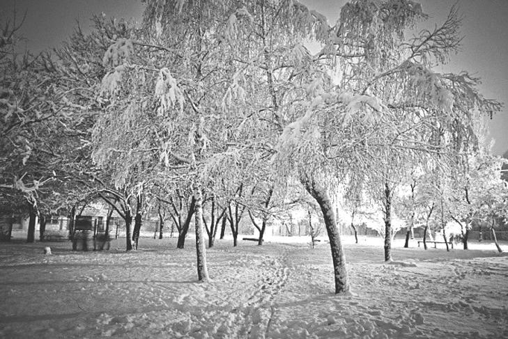 До Бердянська прийшла справжня зима  - фото 4