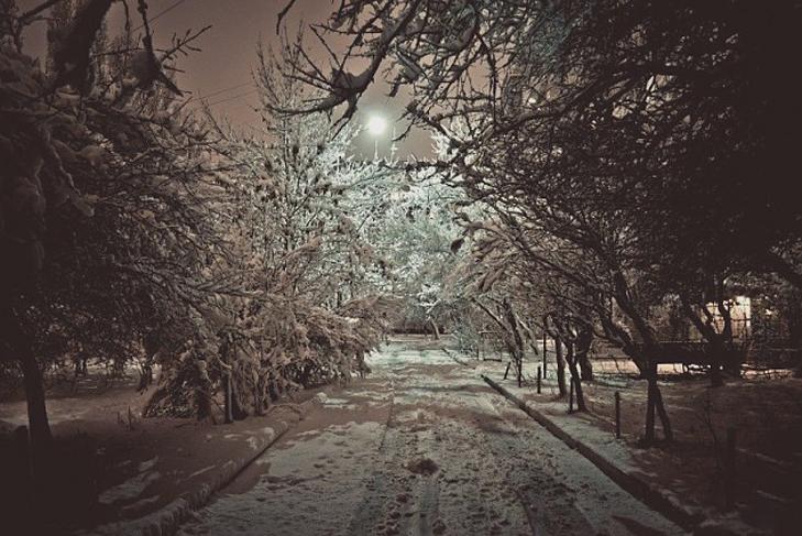 До Бердянська прийшла справжня зима  - фото 5