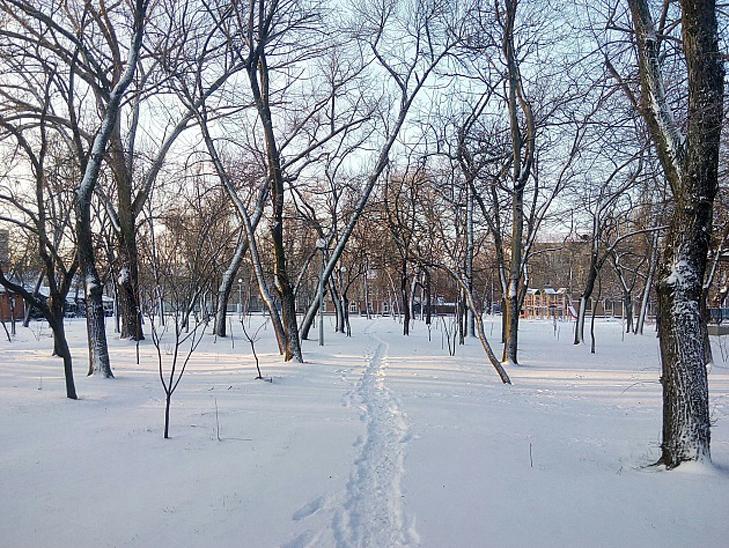 До Бердянська прийшла справжня зима  - фото 6