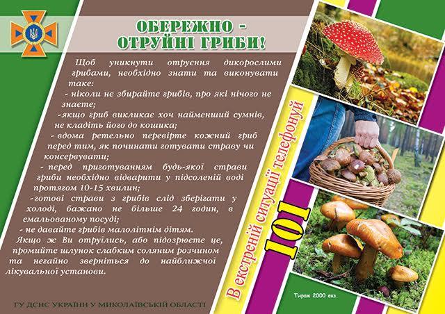 За чотири дні на Миколаївщині є два випадки отруєння грибами