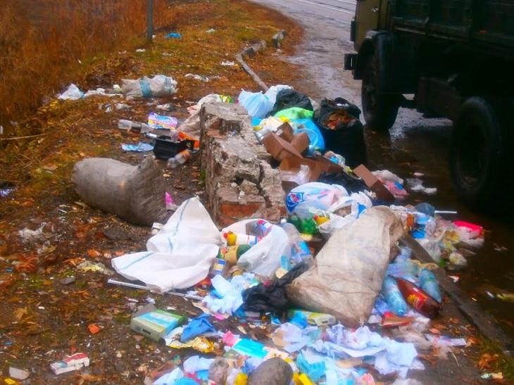 До і після: як запоріжці перетворюють узбіччя на смітники (ФОТО) - фото 2