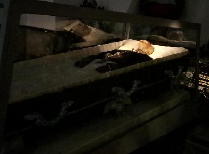 Музей Пирогова - фото 2