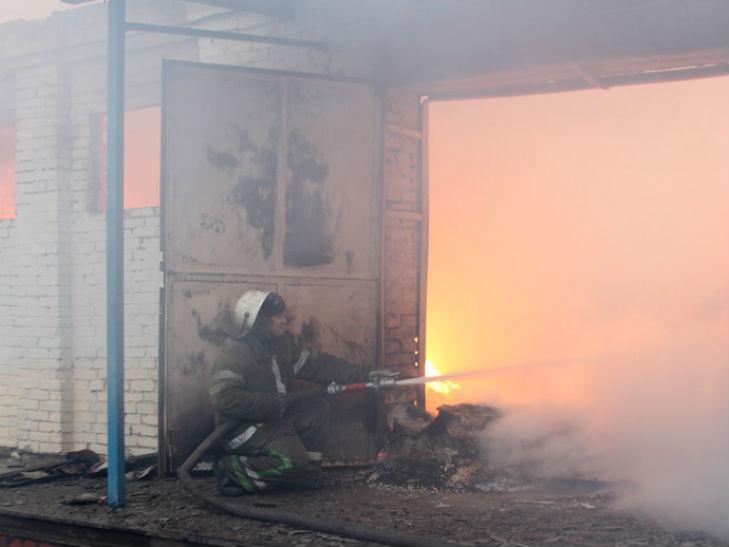 У Лубнах на Полтавщині згорів великий склад місцевого підриємства - фото 1