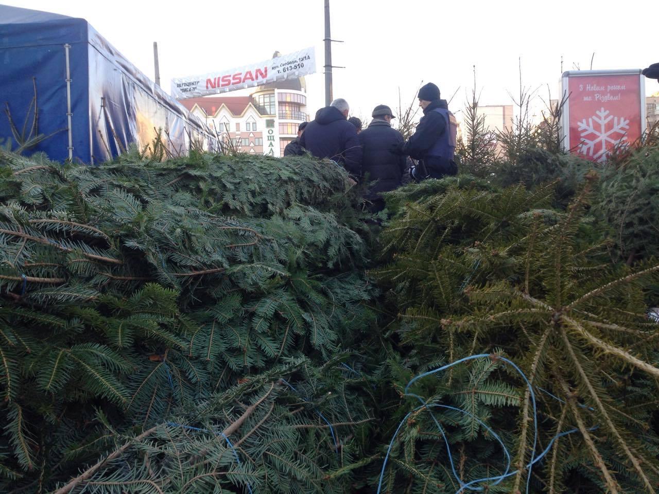 В Хмельницькому почалися рейди ялинковими базарами - фото 1