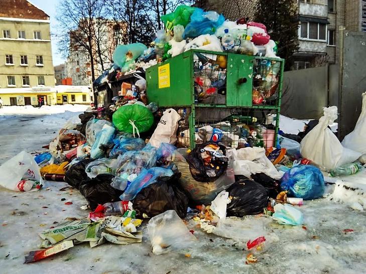 Як сніг оголив сміття Садового у Львові (ВІДЕО, ФОТО) - фото 7