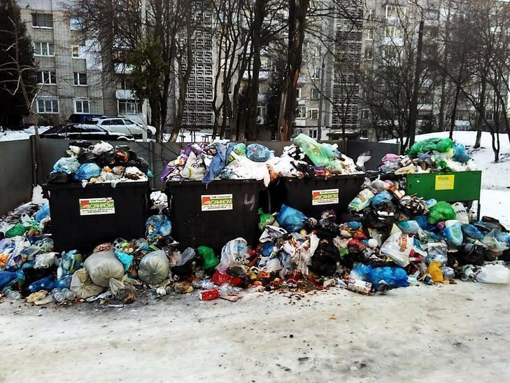 Як сніг оголив сміття Садового у Львові (ВІДЕО, ФОТО) - фото 1