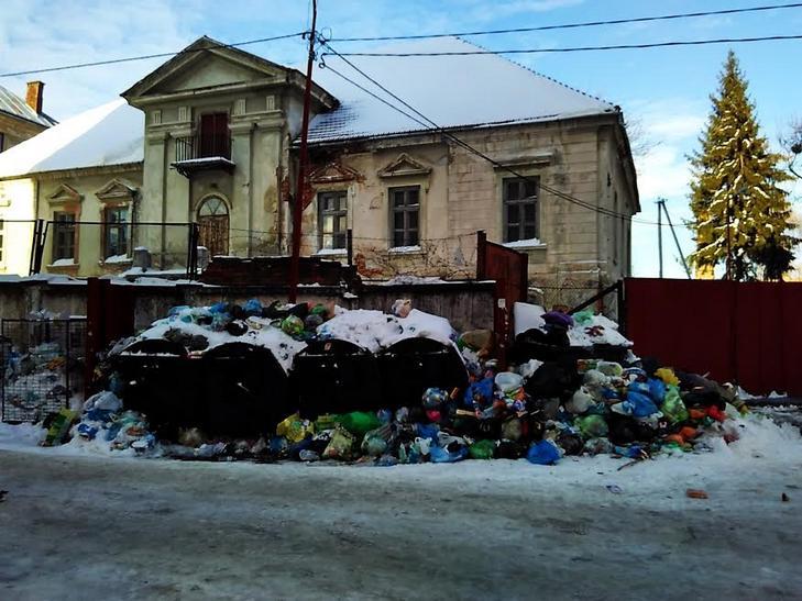 Як сніг оголив сміття Садового у Львові (ВІДЕО, ФОТО) - фото 5