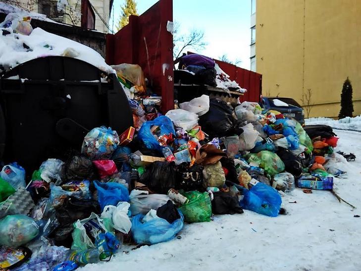Як сніг оголив сміття Садового у Львові (ВІДЕО, ФОТО) - фото 6