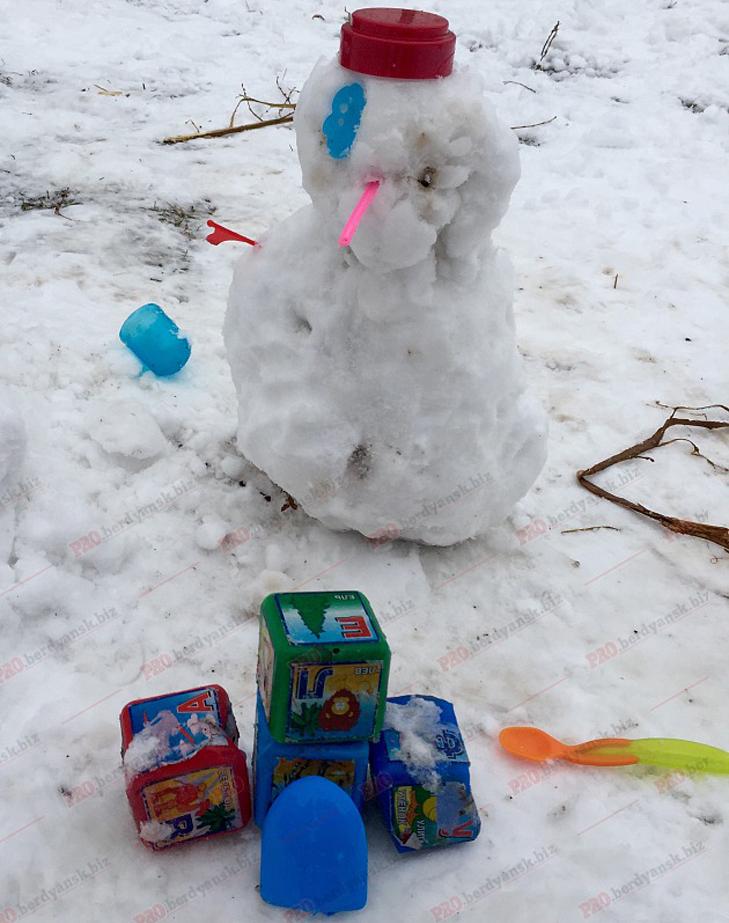 Парад сніговиків у Бердянську - фото 11
