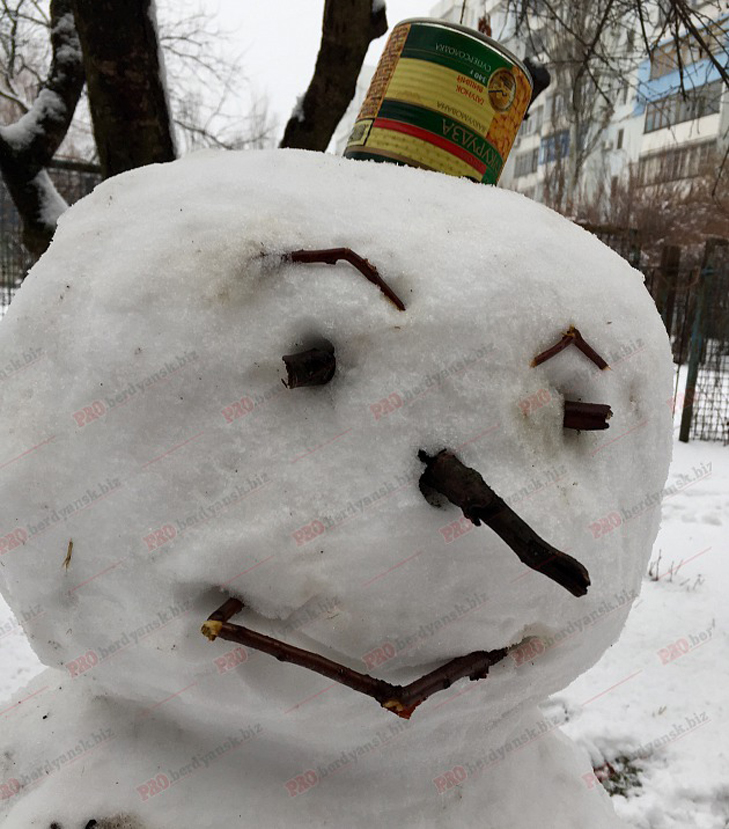 Парад сніговиків у Бердянську - фото 6