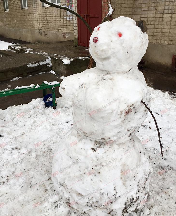 Парад сніговиків у Бердянську - фото 7