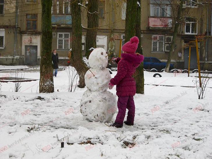 Парад сніговиків у Бердянську - фото 9
