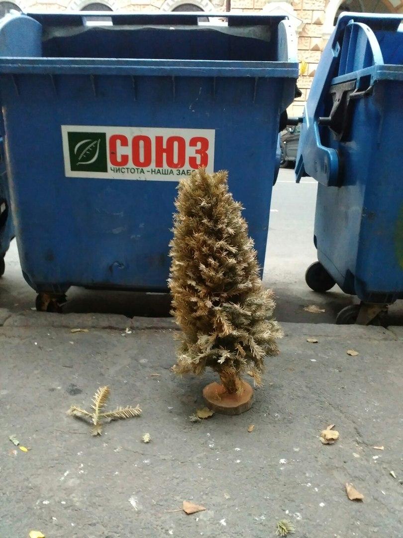 Одесит встановив рекорд, викинувши новорічну ялинку 25 жовтня (ФОТО) - фото 1