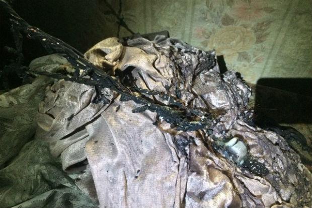 На Харківщині під час пожежі загинули двоє дітей (ФОТО) - фото 2