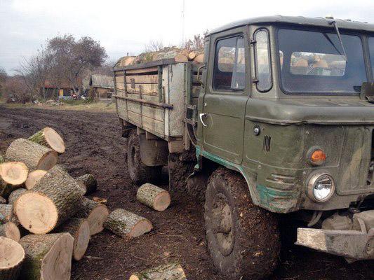 На Харківщині суд заарештував вантажівку з незаконно вивезеною деревиною - фото 1