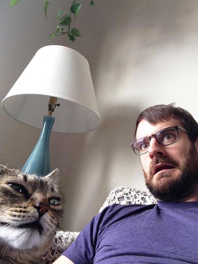 Прикольные картинки кот и хозяин