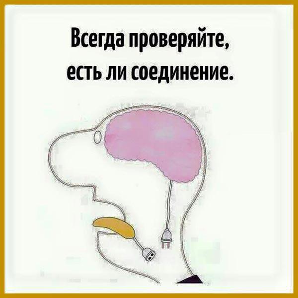 Як Дмитро Медвєдєв з Аліной Кабаєвой писав диктант про БУК - фото 5
