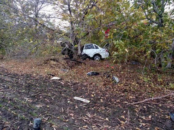 На Миколаївщині Lifan зім'яло об дерево: водій загинув