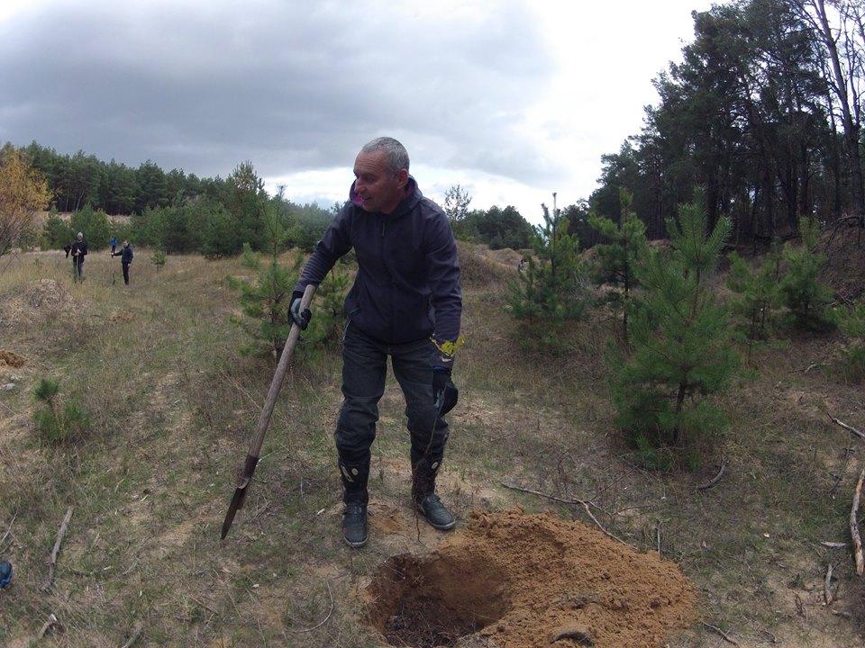 У Миколаєві на місці кар'єра посадили дуби