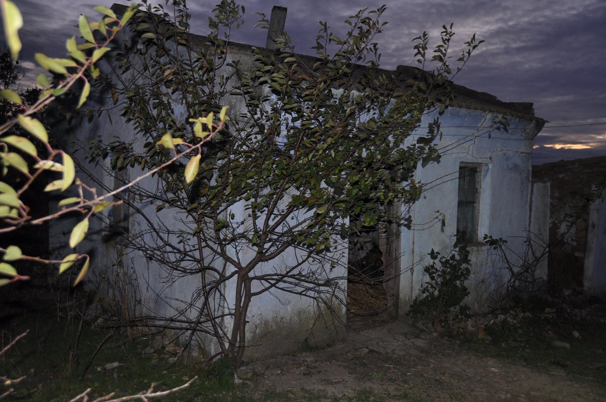 На Миколаївщині четверо зловмисників викрали та досмерті забили чоловіка